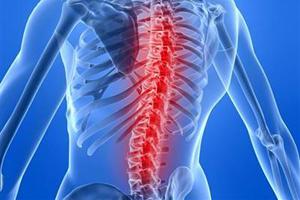 то, что остеохондроз нижнегрудного отдела позвоночника сайтец, однако нужно